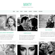 Minty – WordPress Theme Demo (2016-01-25 215517)
