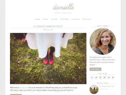 Danielle – WordPress Theme Demo (2015-12-21 192841)